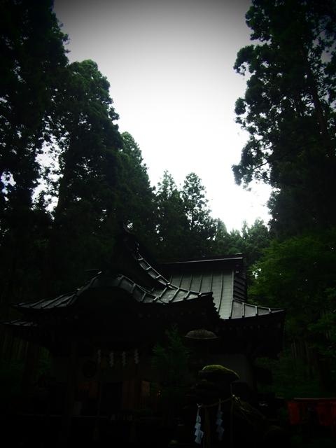 0907 (11).JPG
